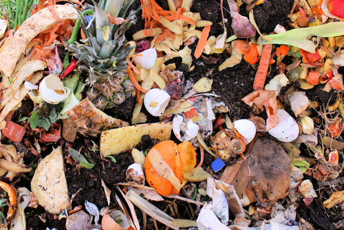 EPA Food Recovery: Turning waste into opportunity