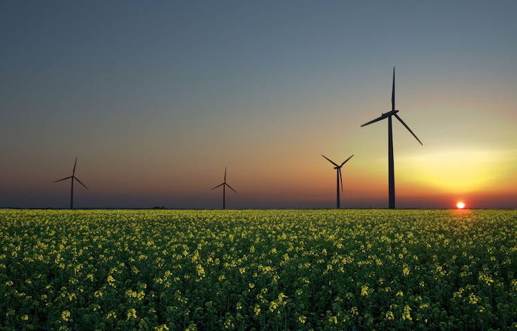 Advocacy and the Clean Power Plan