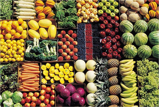 The GMO Debate: How do we feed a growing world?
